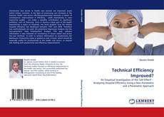 Buchcover von Technical Efficiency Improved?