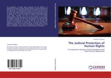 Bookcover of The Judicial Protection of Human Rights