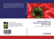 Buchcover von African Indigenous Churches, Polygamy and HIV and Aids