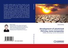 Development of plasticised PVC/clay nano-composites的封面