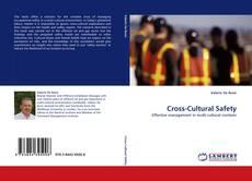Buchcover von Cross-Cultural Safety