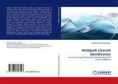 Bookcover of Multipath Channel Identification