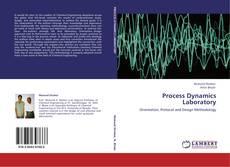 Process Dynamics Laboratory的封面
