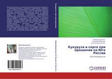 Bookcover of Кукуруза и сорго при орошении на Юге России