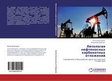 Bookcover of Литология нефтеносных карбонатных отложений