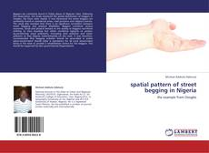 Bookcover of spatial pattern of street begging in Nigeria