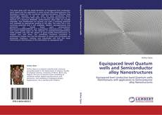Copertina di Equispaced level Quatum wells and Semiconductor alloy Nanostructures