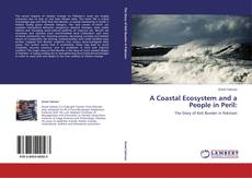 Bookcover of A Coastal Ecosystem and a People in Peril: