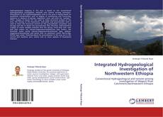 Bookcover of Integrated Hydrogeological Investigation of Northwestern Ethiopia