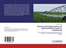 Bookcover of Biochemical Degradation of lignocellulosic waste in bioethanol