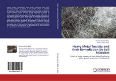 Bookcover of Heavy Metal Toxicity and their Remediation by Soil Microbes