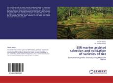 Bookcover of SSR marker assisted selection and validation of varieties of rice