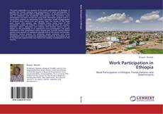 Bookcover of Work Participation in Ethiopia