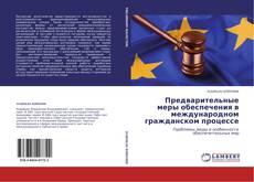 Bookcover of Предварительные меры обеспечения  в международном гражданском процессе