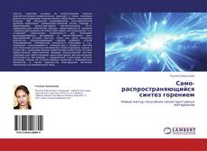 Bookcover of Само-распространяющийся синтез горением