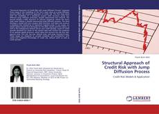 Bookcover of Structural Approach of Credit Risk with Jump Diffusion Process