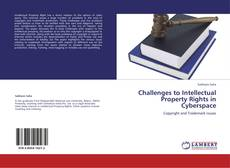 Bookcover of Challenges to Intellectual Property Rights in Cyberspace