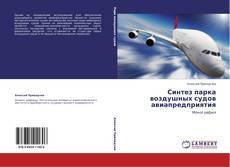 Bookcover of Синтез парка воздушных судов авиапредприятия