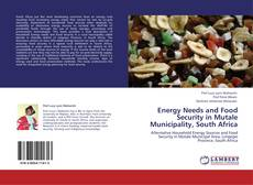 Capa do livro de Energy Needs and Food Security in Mutale Municipality, South Africa