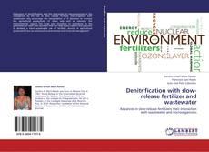 Portada del libro de Denitrification with slow-release fertilizer and wastewater