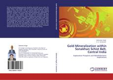 Bookcover of Gold Mineralization within Sonakhan Schist Belt, Central India