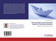The evolution and economic impact of software patents kitap kapağı