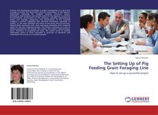 Bookcover of The Setting Up of Pig Feeding Grain Foraging Line