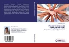 Buchcover von Межэтническая толерантность