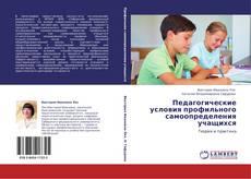 Педагогические условия профильного самоопределения учащихся的封面