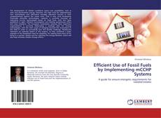 Bookcover of Efficient Use of Fossil Fuels by Implementing mCCHP Systems