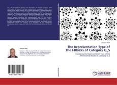 The Representation Type of the I-Blocks of Category O_S kitap kapağı