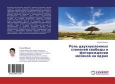 Bookcover of Роль двухнуклонных степеней свободы в фоторождении мезонов на ядрах