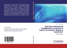 """Bookcover of Австро-немецкая симфония и соната в свете эстетики """"Бури и натиска"""""""