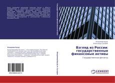 Buchcover von Взгляд из России: государственные финансовые активы