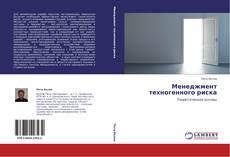 Bookcover of Менеджмент техногенного риска