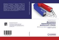 Bookcover of Динамика однохиральных доменных стенок
