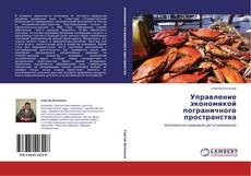 Bookcover of Управление экономикой пограничного пространства