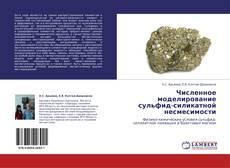 Buchcover von Численное моделирование сульфид-силикатной несмесимости