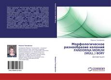 Обложка Морфологическое разнообразие колоний PANDORINA MORUM (MÜLL.) BORY