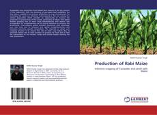 Bookcover of Production of Rabi Maize