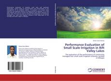 Bookcover of Performance Evaluation of Small Scale Irrigation in Rift Valley Lakes