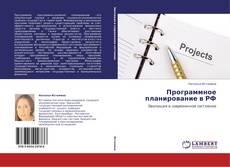 Bookcover of Программное планирование в РФ