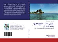 Bookcover of Microcredit and Community Organizations in a Wetland of Bangladesh
