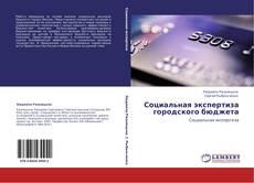 Bookcover of Социальная экспертиза городского бюджета
