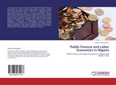 Bookcover of Public Finance and Labor Economics in Nigeria