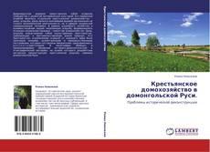 Bookcover of Крестьянское домохозяйство в домонгольской Руси.