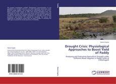 Drought Crisis: Physiological Approaches to Boost Yield of Paddy的封面