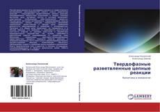 Bookcover of Твердофазные разветвленные цепные реакции