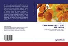 Обложка Грамматика русского причастия