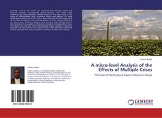 Bookcover of A micro-level Analysis of the Effects of Multiple Crises